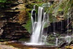 Падения Elakala - долина Canaan, Западная Вирджиния стоковое изображение rf