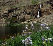 Падения Willow Creek Стоковое фото RF