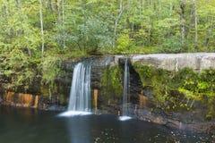 Падения Wolf Creek Стоковое Изображение RF