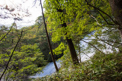 Падения Yudaki, Nikko, Tochigi, Япония Взгляд от тропы между смотровой площадкой и верхней частью водопадов Стоковые Фото