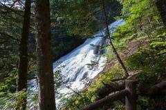 Падения Yudaki, Nikko, Tochigi, Япония Взгляд от тропы между смотровой площадкой и верхней частью водопадов Стоковые Фотографии RF