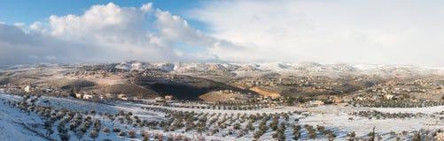 Палестина в зиме стоковое фото