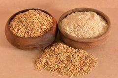 Пади и рис Стоковое Изображение