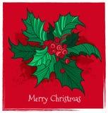 Падуб рождества цвета иллюстрация штока