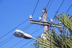 Пальма и кабели уличного фонаря поляка сети Стоковое Изображение RF