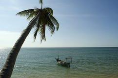 Пальма и шлюпка на воде Стоковые Фото