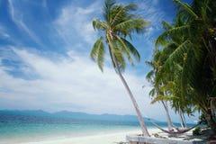Пальма кокоса на солнечности и песчаном пляже и тропическом море a Стоковое Изображение RF