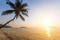 Пальма на тропическом взморье во время изумительного захода солнца Природа Стоковые Изображения RF