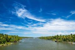 Пальмы вдоль канала подпоров Кералы Стоковые Изображения RF