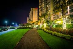 Пальмы и гостиницы highrise вдоль дорожки на ноче, в Virg Стоковая Фотография