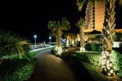 Пальмы и гостиницы highrise вдоль дорожки на ноче, в Virg Стоковое Фото