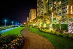 Пальмы и гостиницы highrise вдоль дорожки на ноче, в Virg стоковое изображение rf