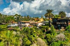 Пальмы и дома на холме Стоковые Изображения