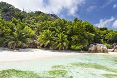 Пальмы и совершенный пляж, Ла Digue, Сейшельские островы Стоковые Фотографии RF