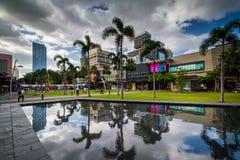 Пальмы и современные здания отражая в бассейне на Bonifaci стоковые фотографии rf