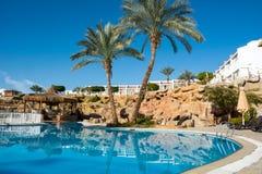 Пальмы и loungers солнца бассейном Стоковая Фотография RF