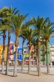 Пальмы на пляже Villajoyosa Стоковое Изображение RF