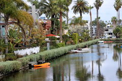 Пальмы отражают в канале в Венеции, Калифорнии стоковые фото