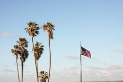 Пальмы с американским флагом Стоковое Изображение RF
