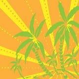Пальмы silhouette на острове также вектор иллюстрации притяжки corel Тропический экзотический завод на предпосылке с лучами Совре иллюстрация вектора
