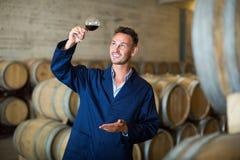 Пальто жизнерадостного работника винодельни нося держа бокал вина Стоковая Фотография RF