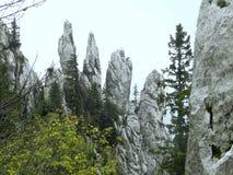 Пальцы белых ущелий стоковое изображение rf