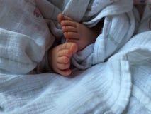 Пальцы ноги младенца Стоковые Фотографии RF