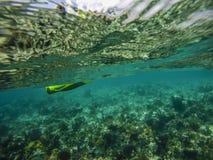 Пальцы ноги Sandy, Багамские острова Стоковые Изображения