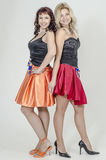 Певица актрисы 2 девушек в платьях коктеиля белокурых и коричневых волосах Стоковое фото RF