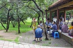 Певицы Китая стоковая фотография