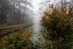 Пейзажный бассейн Стоковая Фотография