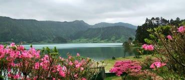 пейзаж Азорских островов идилличный стоковые фотографии rf