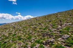 Пейзаж ландшафта горы с голубым небом над timberline Стоковые Изображения