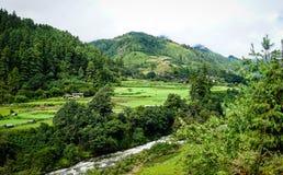 Пейзаж горы в Бутане Стоковая Фотография