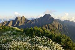 Пейзаж горы в лете Стоковое фото RF
