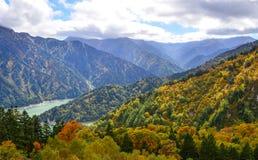 Пейзаж горы на осени в Японии Стоковое фото RF