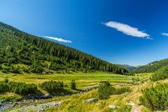 Пейзаж горы осени в Transylvanian Альпах Стоковые Изображения RF