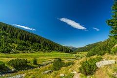 Пейзаж горы осени в Transylvanian Альпах Стоковое Фото