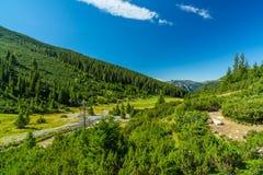 Пейзаж горы осени в Transylvanian Альпах Стоковая Фотография