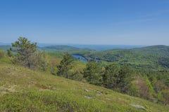 Пейзаж горы самца оленя Стоковое Изображение