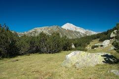 пейзаж горы Стоковые Изображения RF