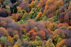 пейзаж горы Стоковые Фото