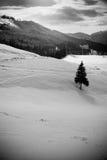 пейзаж горы Стоковое фото RF