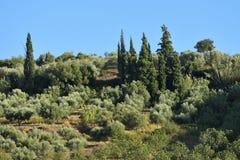 Пейзаж Греции, Пелопоннес Стоковое Изображение