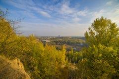 Пейзаж леса с лучами теплого света Стоковая Фотография