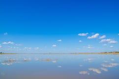 Пейзаж заболоченного места binjiang Стоковые Изображения