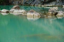 Пейзаж зеленого болота Стоковое Фото