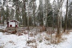 Пейзаж зимы в Nybro Швеции с красным домом стоковое изображение rf