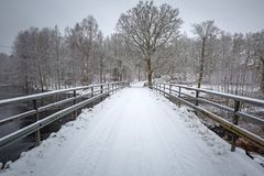 Пейзаж зимы на реке Morrum стоковое изображение rf