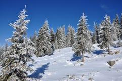 Пейзаж зимы рождества Стоковое Изображение RF